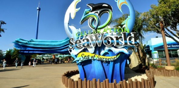 Seaworld Parks And Entertainment Quizzes, Seaworld parks and entertainment Trivia, Seaworld parks and entertainment Questions