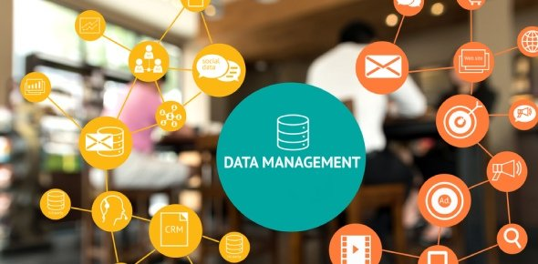 Data Management Quizzes & Trivia