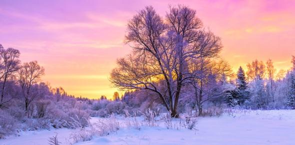 winter Quizzes & Trivia