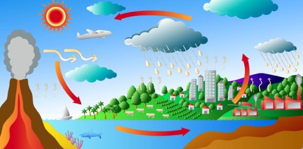 carbon cycle Quizzes & Trivia