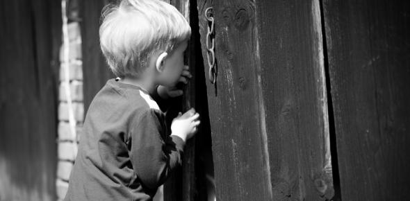 curiosity Quizzes & Trivia
