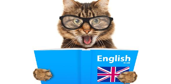 english knowledge Quizzes & Trivia