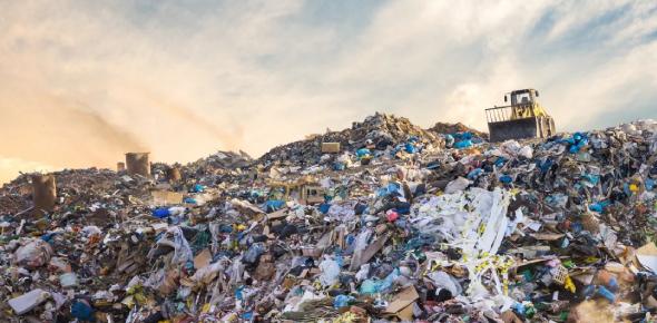 waste Quizzes & Trivia