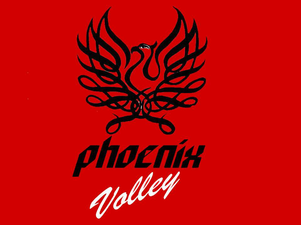 IQ Test From Phoenix Volley