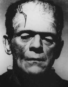an assessment of the novel frankenstein by mary shelley Is of the view that frankenstein is an epitome of feminist assessment on the novel frankenstein mary shelley: frankenstein frankenstein by mary shelley.