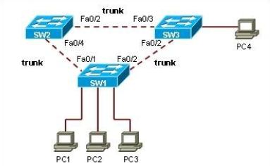 CCNA Lan Chapter #5