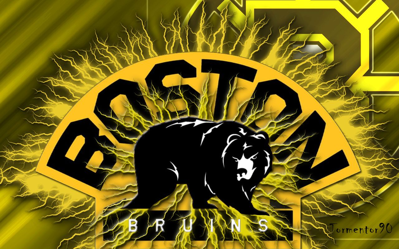 The Boston Bruins Players Of 2008-2009