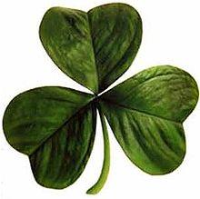 The Ireland Quiz