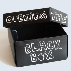 Upon Opening The Black Box And Finding IT Empty