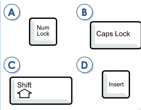 The Ultimate Quiz Over Computer Fundamentals