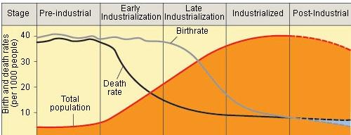 Demographics Charts And Graphs