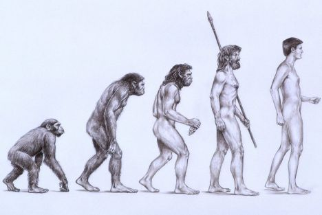 What Human Ancestor Are You?