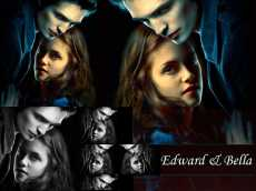 Are You A True Twilight Saga Expert?