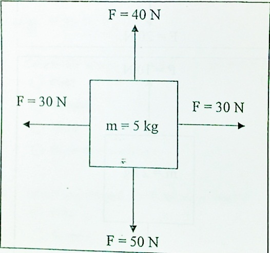 Calculating Net Force Body Diagram Search For Wiring Diagrams