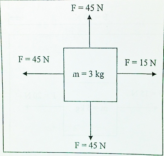 Free Body Diagrams: Calculating Net Force And Acceleration ...